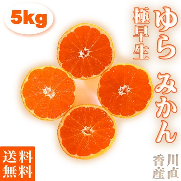 みかん 由良 ゆら 極早生 5kg 小玉(3S〜S) 送料無料 ミカン 数量限定 蜜柑 お取り寄せ 香川産 ふるさと 産直 秀品 果物 くだもの フルーツ ギフト プレゼント