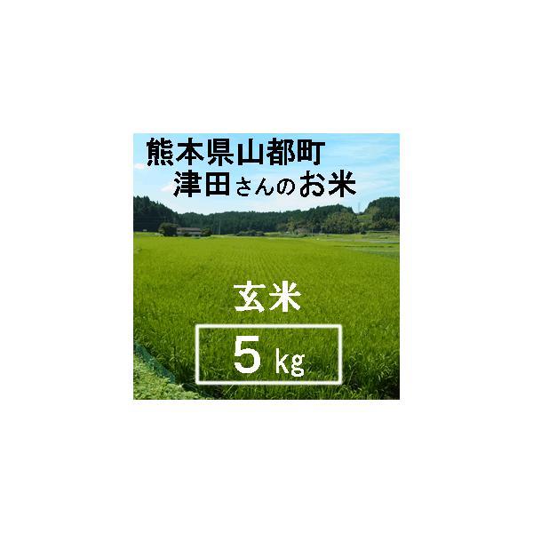(予約販売)玄米 5kg (有機JAS) 令和3年産 ヒノヒカリ 熊本県産 送料別/ 山都町 津田さんのお米