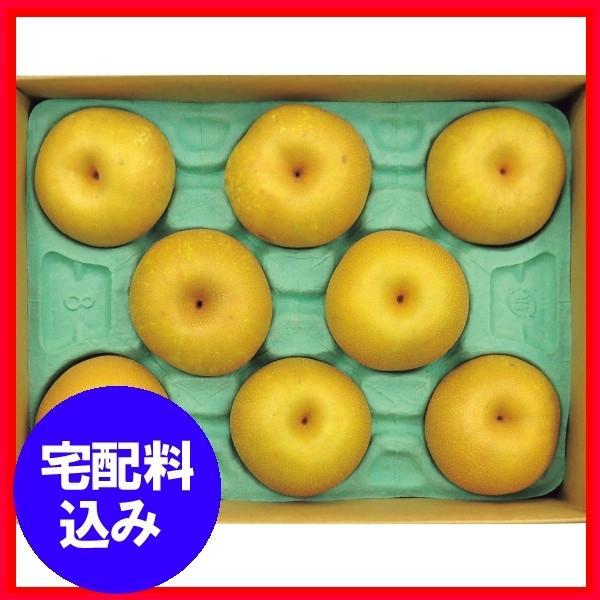 お中元  果物 幸水梨8玉 通販 1012-068