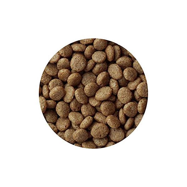 メディコート アレルゲンカット 魚&お米 低脂肪ライトタイプ 1歳から 成犬用 450g(225g×2袋)|noel-honpo|04