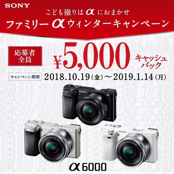 SONY ミラーレス一眼 α6000 パワーズームレンズキット E PZ 16-50mm F3.5-5.6 OSS ホワイト ILCE-60 nomad