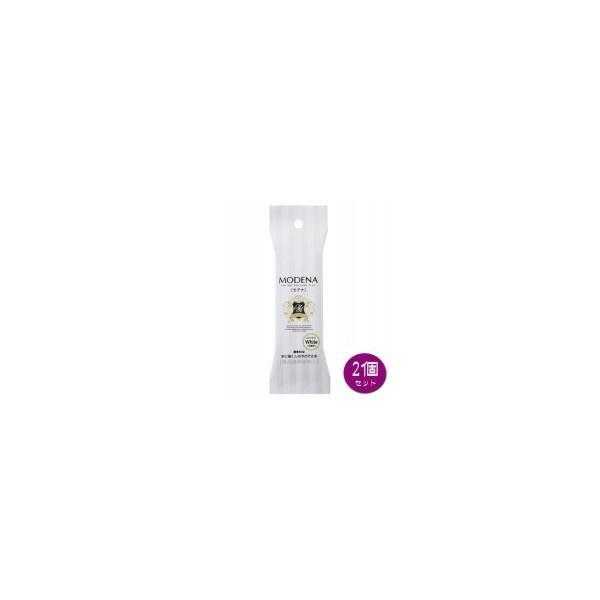 PADICO パジコ 樹脂粘土 Modena White(モデナホワイト) 60g 2個セット 303117 送料無料  送料無料 メーカー直送 期日指定・ギフト包装・注文後のキャン