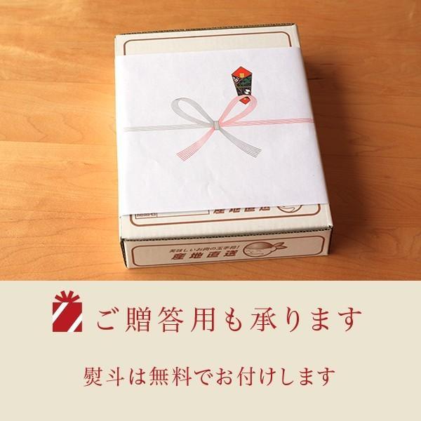 豚肉 国産 やみつき焼肉豚ホルモン(1〜2人分)300g nonaka29 03