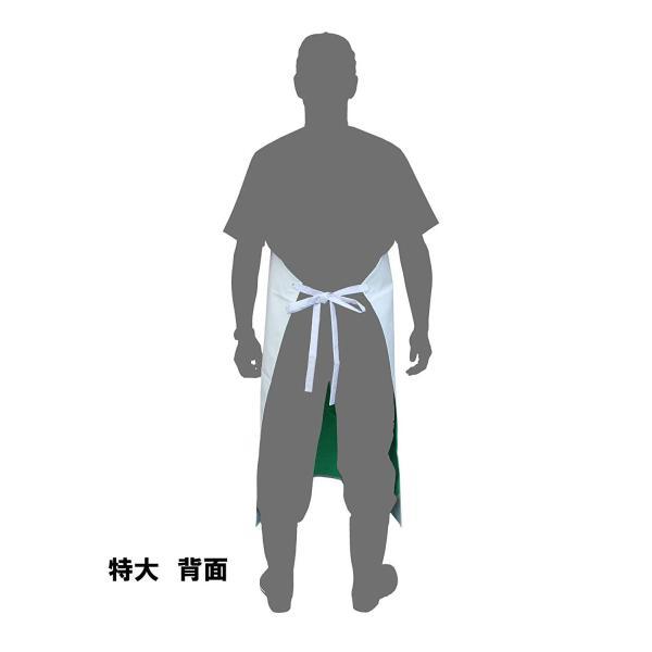 衛生業務用エプロン クラレビニロン胸付前掛|nonnonxx2001|03