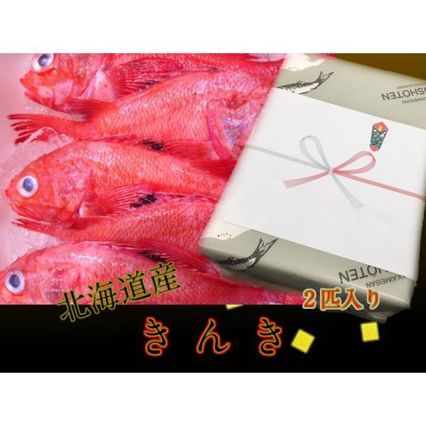 北海道産 冷凍(生きんき)(めんめ) 2尾