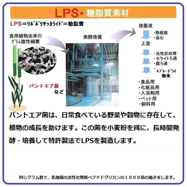 お試し用 パントエア菌 LPS配合 マクロF1000 mf5 60g入 約1カ月分 免疫 ビタミン マクロファージ 活性化 健康増進 簡易包装 送料無料 税込 ******|nourinn|13