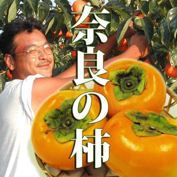 ギフト たねなし柿 10月5日〜かき ・奈良西吉野産 2L玉 12コ
