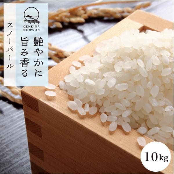 秋田県産スノーパール 10kg (精米後9kg) 送料無料 選べる精米(玄米/胚芽米/白米/無洗米) 令和2年産 真空パック 農家直送 お米
