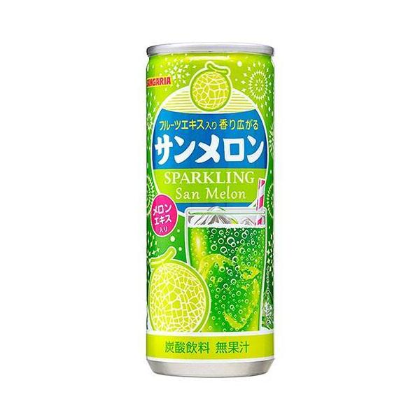 送料無料 【2ケースセット】サンガリア サンメロン 250g缶×30本入×(2ケース)