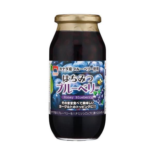 送料無料 加藤美蜂園本舗 はちみつブルーベリー 650g瓶×6本入