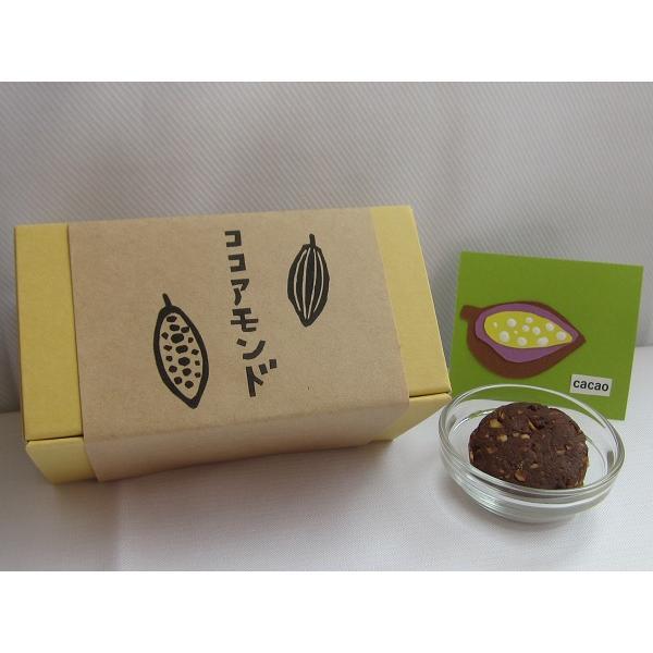 焼き菓子 ココアアーモンドクッキー nposinsei