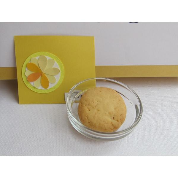 【ご自宅用】塩レモンクッキー nposinsei 02