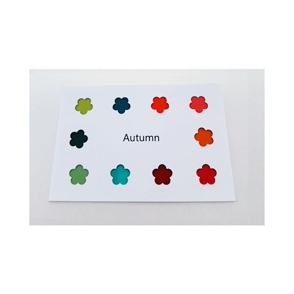パーソナルカラー 10タイプ はがきサイズ 布見本 カラーパレット スウォッチ|nrkcolorshop2|04