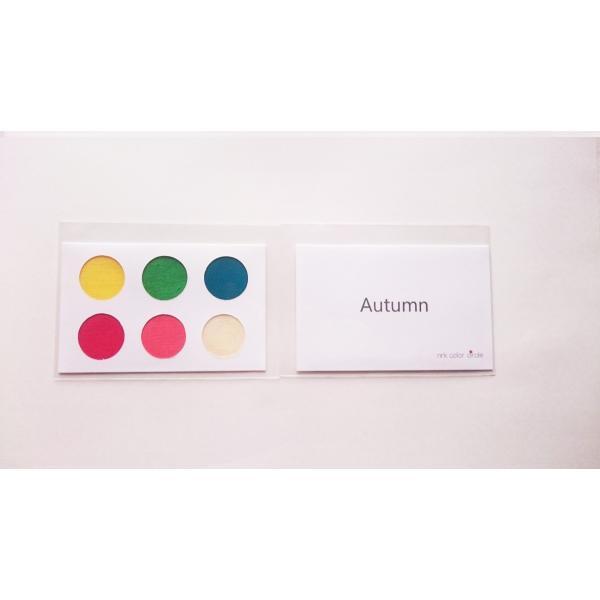 パーソナルカラー 10タイプ 黄 緑 青 赤 ピンク 定番色 カードサイズ スウォッチ 布見本 nrkcolorshop2 05