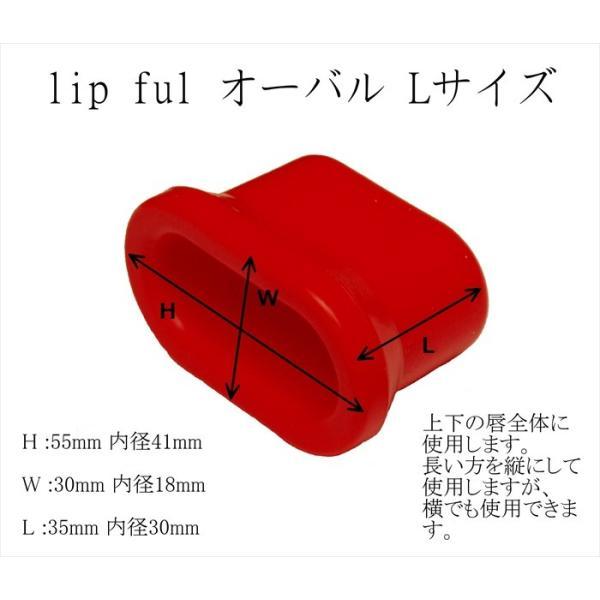 口プチ 4サイズセット 鼻プチの次は口プチ 唇を簡単ボリュームアップ リップフル  セクシーリップス リップエンハンサー 送料無料 インスタグラムで話題沸騰|nsaeshop|06