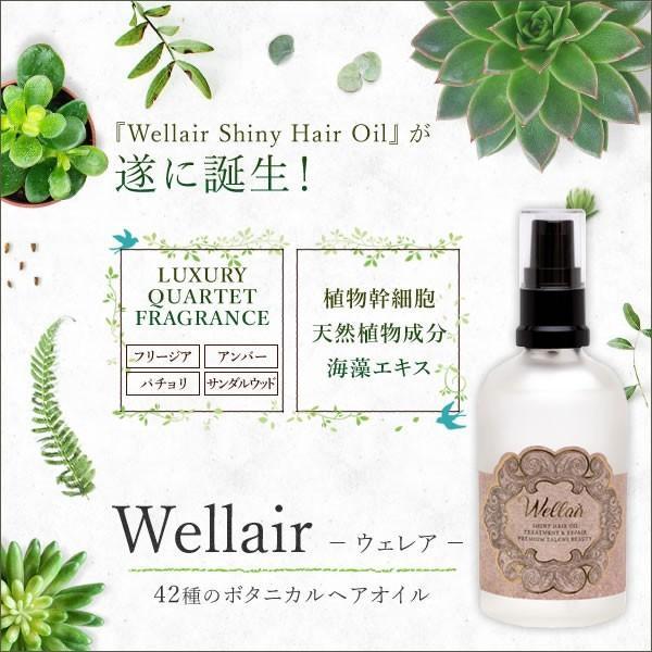 ウェレア Wellair 115ml ヘアケア サラサラ 日本メーカー新品 ヒアルロン酸 正規取扱店 美髪 パラベンフリー 無着色 希少な美しい髪成分42種のボタニカルヘアオイル