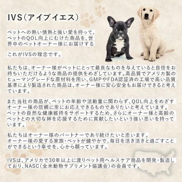 リピダーム 小型/中型犬用 60粒 サプリ ビタミン カルシウム オメガ3&6とビタミンの独自乳化処方でワンちゃんの皮ふと毛並みの健康維持をサポート|ntc-yh|02