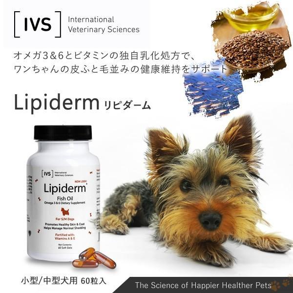 リピダーム 小型/中型犬用 60粒 サプリ ビタミン カルシウム オメガ3&6とビタミンの独自乳化処方でワンちゃんの皮ふと毛並みの健康維持をサポート|ntc-yh|04