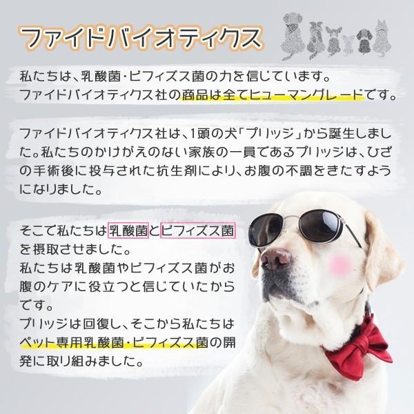 グッドガッツ 小型犬用 15g サプリメント 乳酸菌 ビフィズス菌 酵素 ニオイが気になるワンちゃんに!腸内細菌叢を整え、便とおなか対策をサポート!|ntc-yh|02
