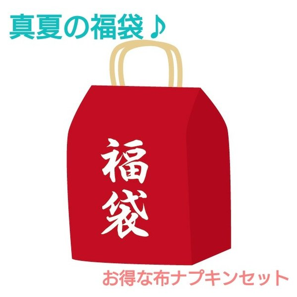 布ナプキン 真夏の福袋 セット商品 お買い得 セール アウトレット オーガニックコットン  生理用ナプキン 柄はおまかせ|nunonapu-soala