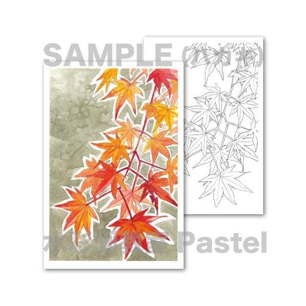 大人の塗り絵 透明水彩画 静物画 植物 お花紅葉絵ハガキポスト