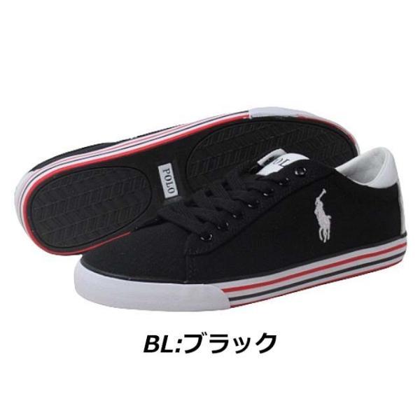 ポロラルフローレン POLO RALPH LAUREN HARVEY スニーカー メンズ 靴|nws|02