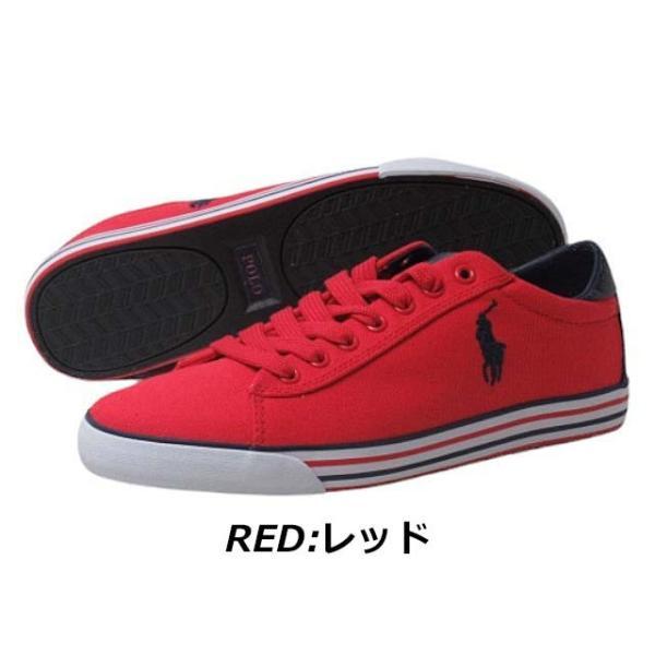 ポロラルフローレン POLO RALPH LAUREN HARVEY スニーカー メンズ 靴|nws|08