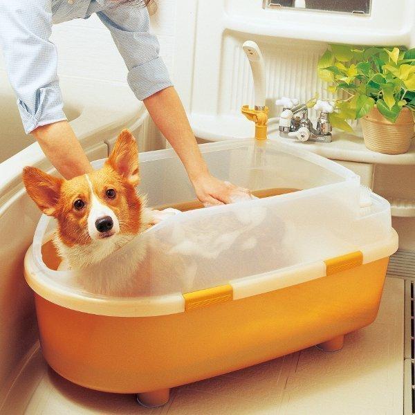 ペット用 バスタブ BO-800E オレンジ アイリスオーヤマ お風呂 桶 たらい 犬 猫 シャンプー シャワー ドッグ キャット