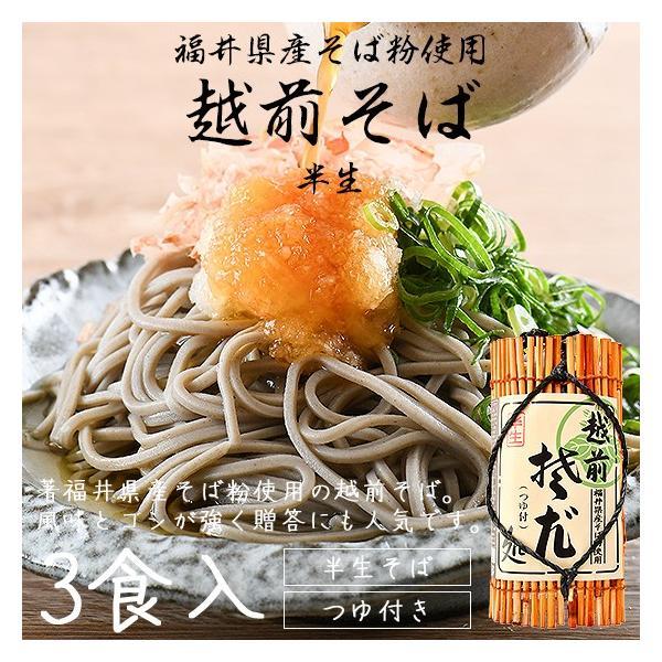 そば 越前そば 3食入り 半生 つゆ付き 福井 お土産 ギフト 贈答|o-select-fukui