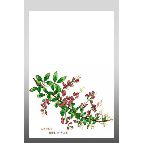 花 イラスト ポストカード 絵葉書 イラスト画「ふる里の花」宮城県(ミヤギノハギ)