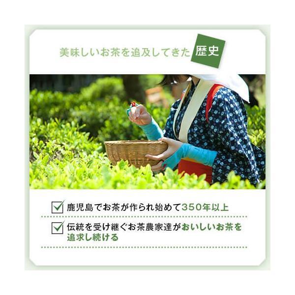 新茶 知覧茶 お茶 煎茶 緑茶 鹿児島茶 国産 ちらん茶「緑」2本セット ネコポス送料込 ギフト 贈り物 鹿児島県産|ocha-no-budouen|09
