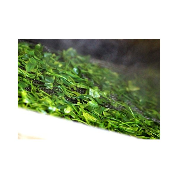 基山の翠 100g 5本/特上煎茶/新茶/煎茶/茶葉/緑茶/日本茶/お茶|ocha-sonobe|04