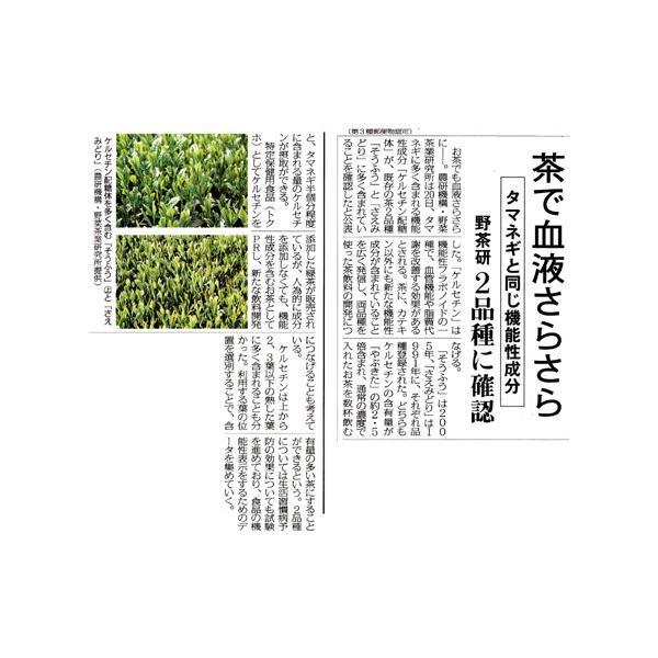 さえみどり 90g/極上煎茶/新茶/煎茶/茶葉/緑茶/日本茶/お茶 ocha-sonobe 05