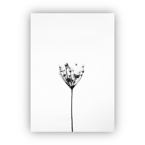 アートポスター/Aroma of Paris/選べる7サイズ&ポスター単品orフレームセット/Design:#259|octopus-goods01|07