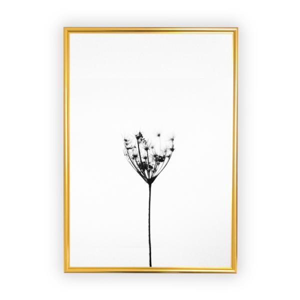 アートポスター/Aroma of Paris/選べる7サイズ&ポスター単品orフレームセット/Design:#259|octopus-goods01|09