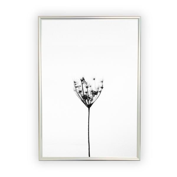 アートポスター/Aroma of Paris/選べる7サイズ&ポスター単品orフレームセット/Design:#259|octopus-goods01|10