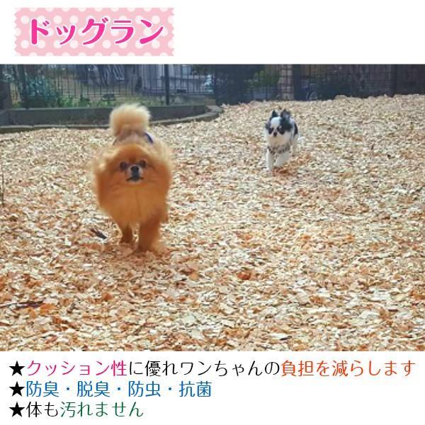 ナチュラルウッドチップ(100L)雑草対策・ドッグラン用 国産 odaiba-gardenclub 06