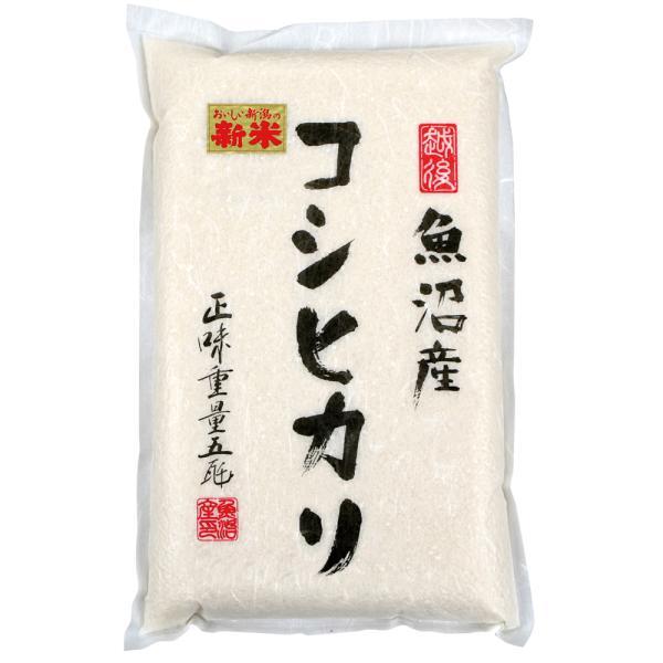 魚沼産コシヒカリ 5kg 2020年度産 真空パック 精米 白米 お取り寄せ 令和2年度産