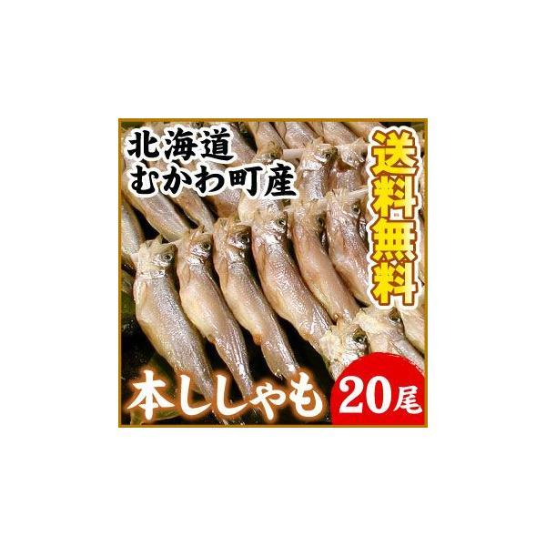 北海道むかわ産 本ししゃも(大サイズ) 20尾入(送料無料) 鵡川