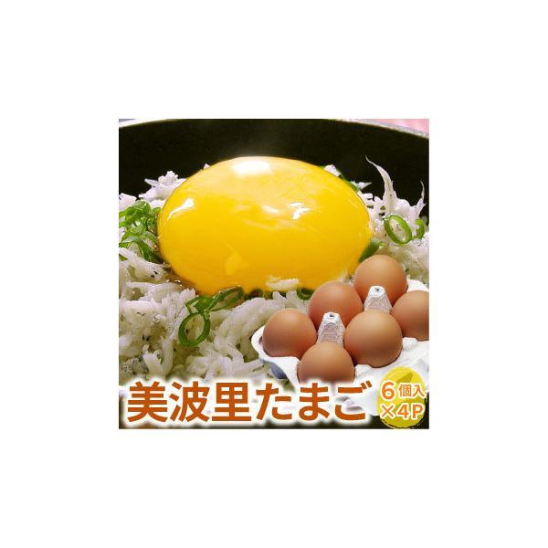 自然農法「ぜひとも生で味わって頂きたい美味しさ」美波里のたまご 6個×4パック 北海道根室産 の びばりの卵(玉子)合計24個(送料無料)