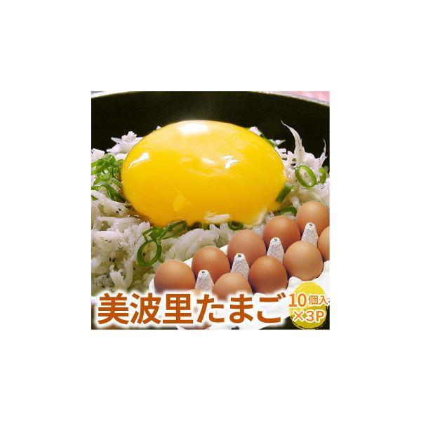 自然農法「ぜひとも生で味わって頂きたい美味しさ」美波里のたまご 10個×3パック 北海道根室産 の びばりの卵(玉子)合計30個(送料無料)