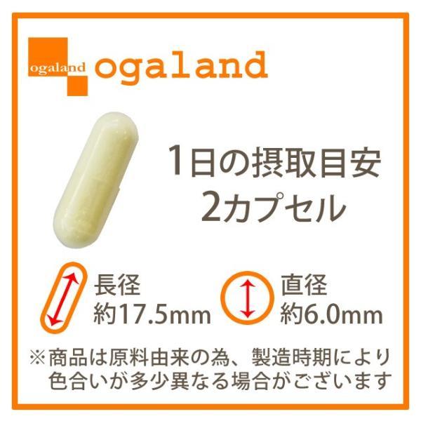 αリポ酸 サプリ サプリメント Lオルニチン ビタミンC ビタミンE を追加配合 ダイエット 約1ヶ月分|oga|12