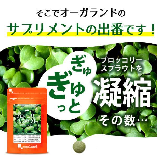セール ブロッコリースプラウト サプリ スルフォラファン ビタミン ミネラル ファイトケミカル ダイエット サプリメント 約1ヶ月分 oga 06