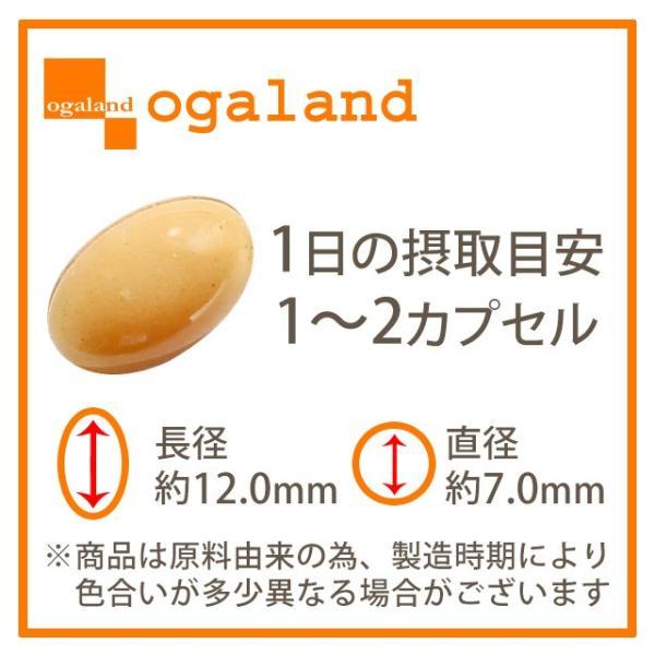 やさい酵素 ダイエット サプリメント サプリ ダイエットサプリ 約1ヶ月分 お1人様2個まで oga 12