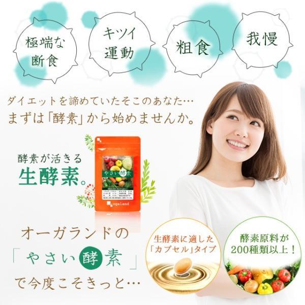やさい酵素 ダイエット サプリメント サプリ ダイエットサプリ 約1ヶ月分 お1人様2個まで oga 10