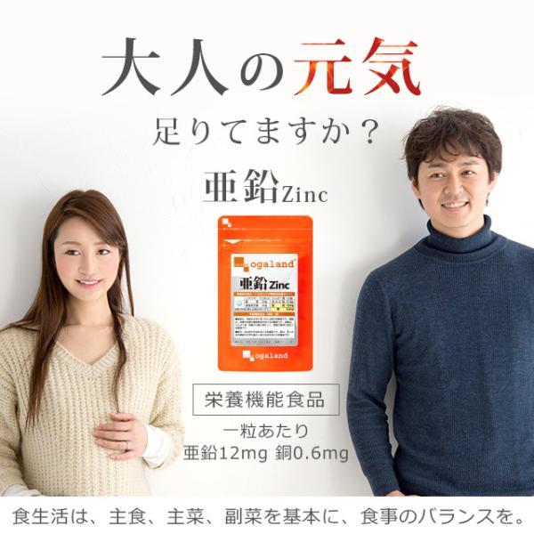 亜鉛 栄養機能食品 必須ミネラル サプリメント サプリ 男性 女性 の元気に 銅 約1ヶ月分 送料無料_ZRB|oga|02