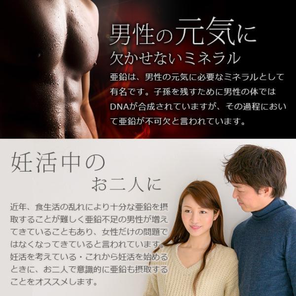 亜鉛 栄養機能食品 必須ミネラル サプリメント サプリ 男性 女性 の元気に 銅 約1ヶ月分 送料無料_ZRB|oga|05