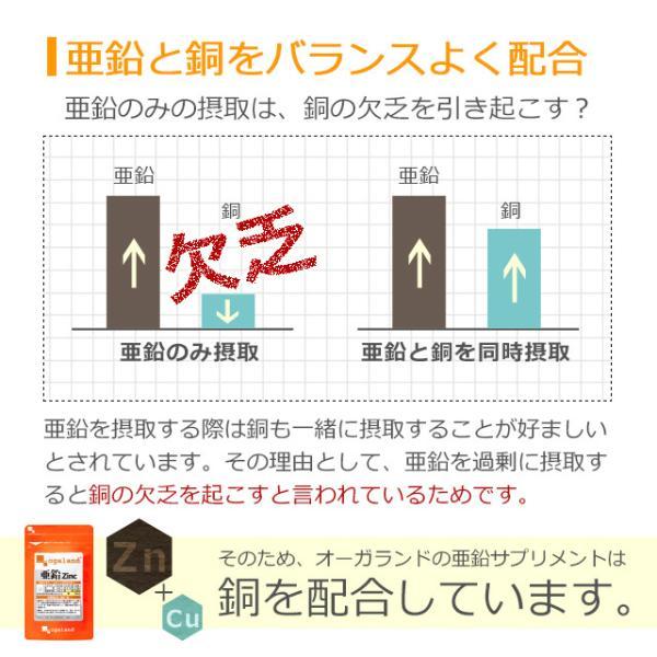 亜鉛 栄養機能食品 必須ミネラル サプリメント サプリ 男性 女性 の元気に 銅 約1ヶ月分 送料無料_ZRB|oga|06