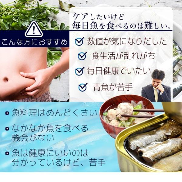 イワシ DHA EPA ペプチド 青魚 アミノ酸 カルシウム ミネラル 健康 いわし缶 よりお手軽 サプリ サプリメント 約3ヶ月分_ZRB|oga|11