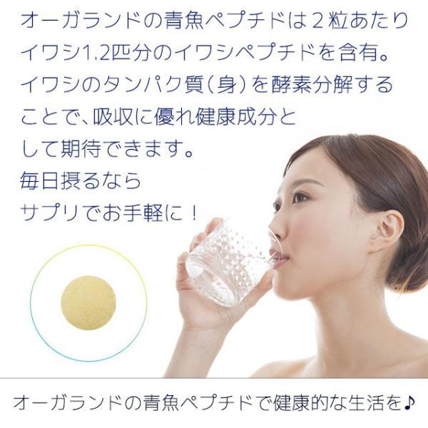 イワシ DHA EPA ペプチド 青魚 アミノ酸 カルシウム ミネラル 健康 いわし缶 よりお手軽 サプリ サプリメント 約3ヶ月分_ZRB|oga|13